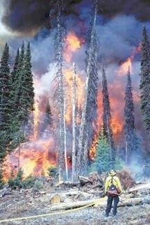Hytrans pump - long distance water supply in Turkey forest fire.