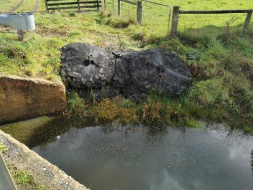 Creek erosion AFTER