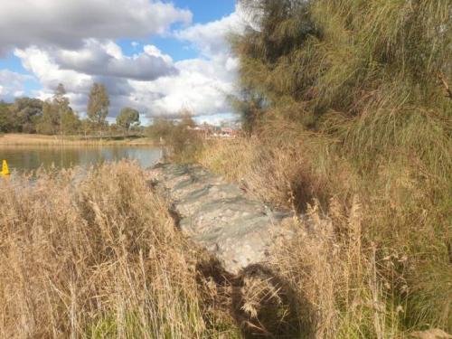 Mildura, Murray River. Scour and erosion prevention