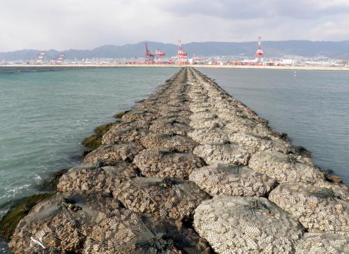 Rock bags used to make Coastal Groyne
